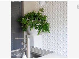 3D wall tiles x 3 boxes feature wall