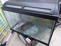 60l fish tank + Eheim filter + more