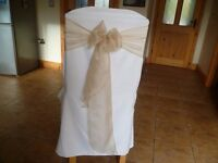 Chair Covers Plain Pale Ivory