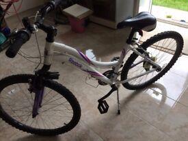 """Reebok SAVANA 21"""" Girls Bike"""