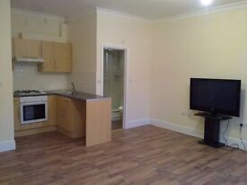 New Very Large Studio Flat 22 ft x 16 ft with seporate side access