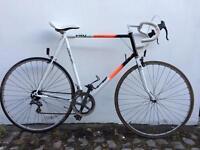 Raleigh Pro Race Bike Bicycle 12 speed Reynolds 501