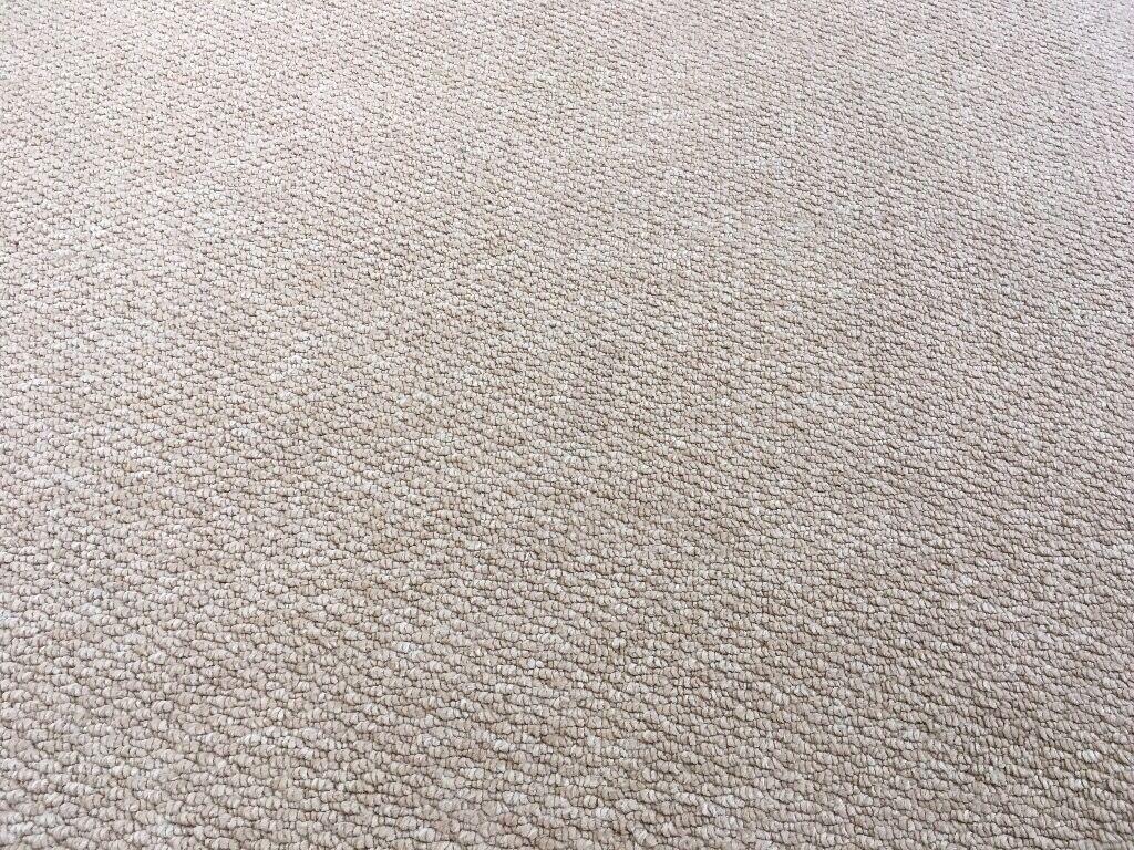 Nordic Berber Carpet Oatmeal In Norwich Norfolk Gumtree