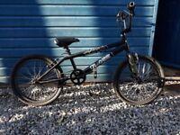 Raleigh Blaze Kids Bike
