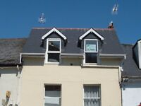 Two bedroom modern flat - central Torquay