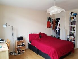Short term - Gorgeous double room in Brixton only for August