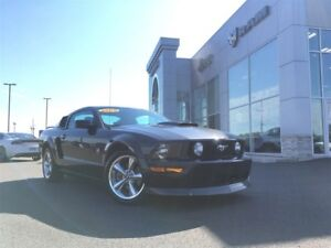 2009 Ford Mustang GT LOW, LOW KM 4.6L V8