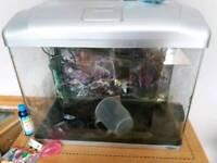 80ltr Seastar fish tank