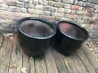 Large black ceramic plant pot (2 available)