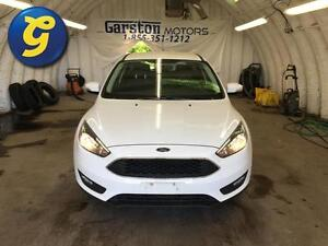 2015 Ford Focus SE**BACK UP CAMERA*PHONE CONNECT/VOICE RECOGNITI Kitchener / Waterloo Kitchener Area image 5