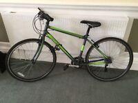 Ventura Men's Hybrid Road Bike