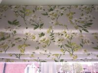 Beautiful Roman Blackout Blind