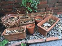 Free plant pots and window boxes