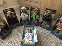 Family of meerkats in excellent condition.