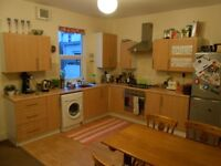 Superb large double room available (unfurnished) in relaxed houseshare in St. Werburghs
