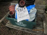 FREE - Quantity of assorted plastic flower pots and trays