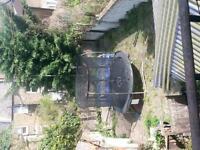 Homeswap (3 bedroom house conversion, garden & noone above,