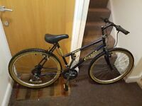 Ladies mountain bike with 26 inch wheel size