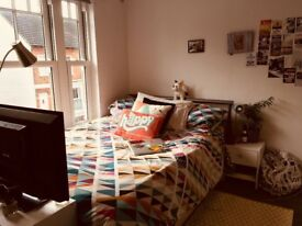 Looking for a student to rent my spacious double bedroom.