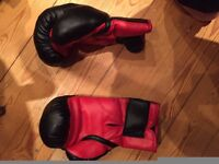 everlast boxing gloves red and black