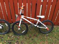 2 x mongoose bikes
