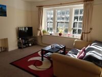 Large double bedroom flat to share with one female
