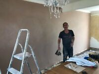 experienced plaster - 07306026726