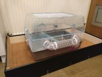 Hamster cage new with handmade tray to keep sawdust away from floor