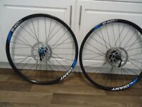 "Giant mountain bike 26"" wheels & discs"