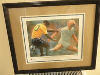 collectable pictures sporting