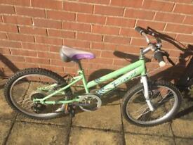 """Elswick Girls Mint Green 20"""" Wheel Bike with 6 Shimano Gears"""