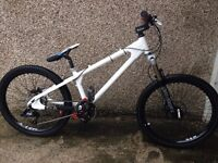 mountain bike/ jump bike / downhill bike