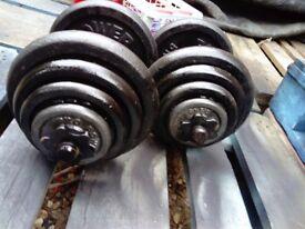 Weights dumbbells 2 x 20 kg