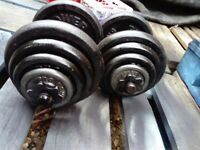 Weights dumbbells 2 x 20 kg