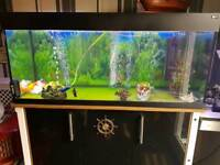250 litre aqua one marine fish tank and cabinet with accessories