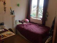 Lovely double room in Euston