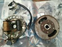 Genuine Honda Stator and Magneto (12v)