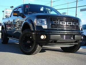 2014 Ford F-150 FX4 LOOK UNIQUE