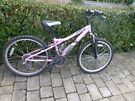 GIRLS PINK - DAWES BANDIT MOUNTAIN BIKE - 24 INCH WHEELS