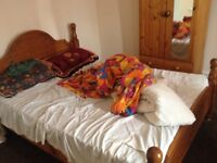 1 double room for professional