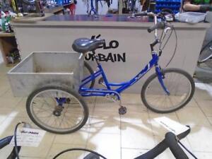 Tricycle pour adulte Parklane 0520-6