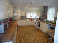 2 Large double rooms in luxury professional house - Fantastic location!!