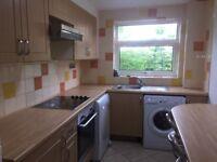 2 Bed flat Cippenham Slough Dss consider
