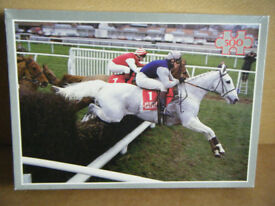 DESERT ORCHID PUZZLE. 500 piece jigsaw. By Each Way Promotions. Complete.