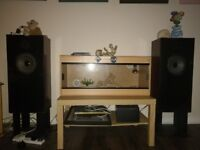 Audio Note AN-E/D Speakers with Stands