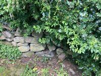 Large garden stones