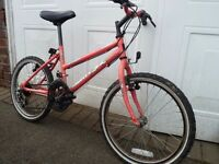 "Girls Mountain Bike , Raleigh , 20"" , age 8-12, Good working order"