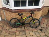 Saracen specialised kids mountain bike