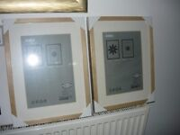 two picture frames brand new