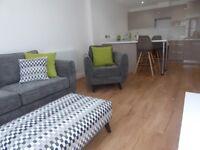 1 cozy bedroom apartment to rent